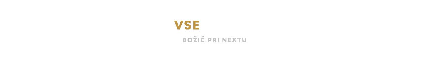 Naslovnica božične prodajalne_MED 72_slovensko